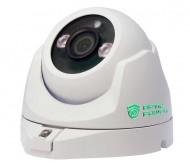 Камера видеонаблюдения IP400DV-V6